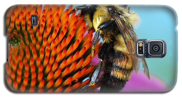 Busy Bee Galaxy S5 Case by Judy Wolinsky