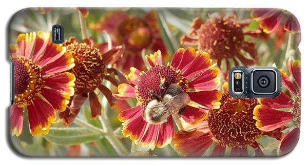 Busy Bee Galaxy S5 Case by Pema Hou