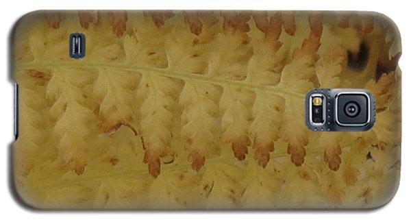 Butter Ferns Galaxy S5 Case
