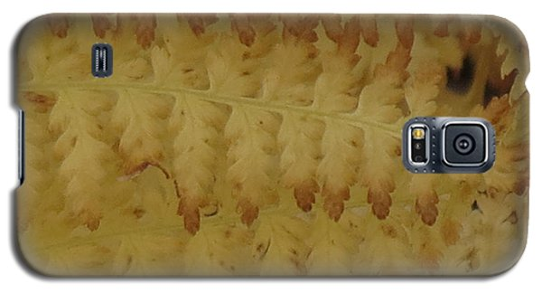 Galaxy S5 Case featuring the photograph Butter Ferns by Aurora Levins Morales