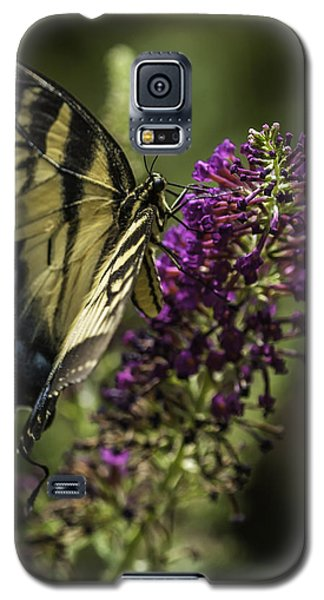Butterflies Along The Blue Ridge Galaxy S5 Case