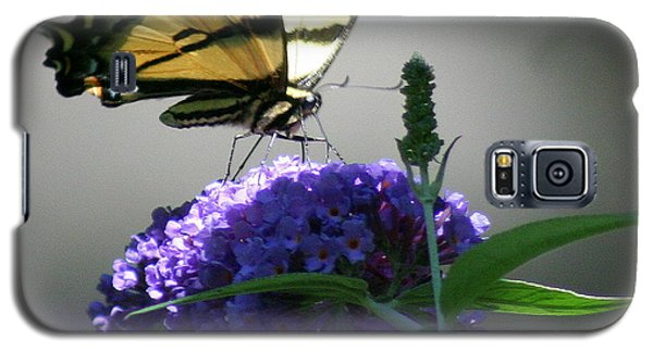 Galaxy S5 Case featuring the photograph Butterflies Are Free by Debra Kaye McKrill