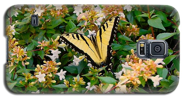 Galaxy S5 Case featuring the photograph Butterflies Are Free by Roseann Errigo