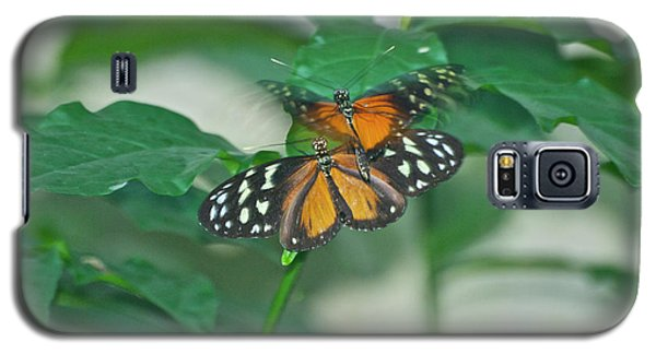 Galaxy S5 Case featuring the photograph Butterflies Gentle Touch by Thomas Woolworth