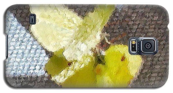 Sulfur Butterflies Mating Galaxy S5 Case