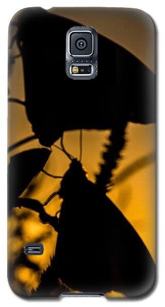 Butterflies Galaxy S5 Case