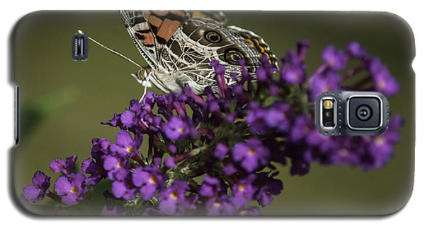 Butterfly 0001 Galaxy S5 Case