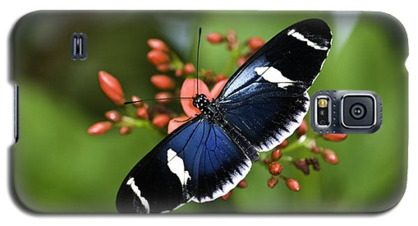 Butterfly 0002 Galaxy S5 Case