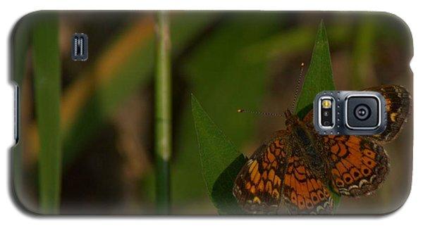 Butterfly 10 Galaxy S5 Case