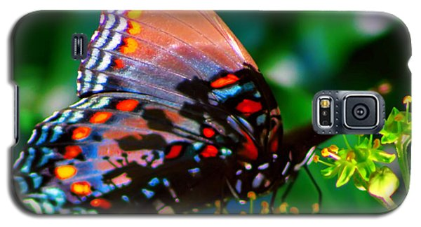 Galaxy S5 Case featuring the photograph Butterfly 2 by Kara  Stewart
