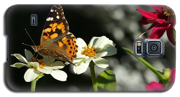 Galaxy S5 Case featuring the photograph Butterfly 4 by Steven Clipperton