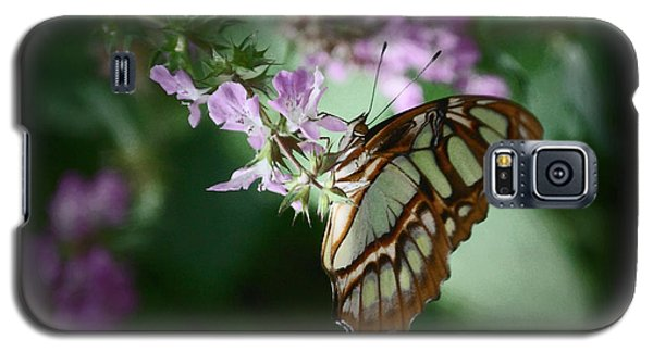 Galaxy S5 Case featuring the photograph Butterfly 7 by Leticia Latocki
