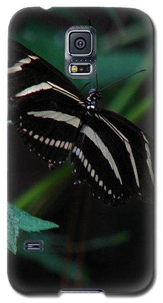 Butterfly Art 2 Galaxy S5 Case by Greg Patzer