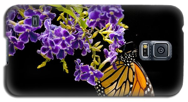 Butterfly Attraction Galaxy S5 Case