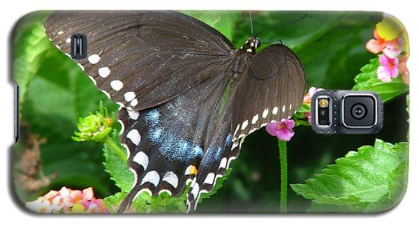 Butterfly Ballot Galaxy S5 Case by Greg Patzer