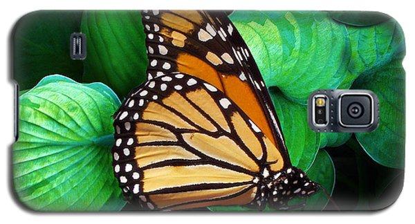 Butterfly Be Still Galaxy S5 Case