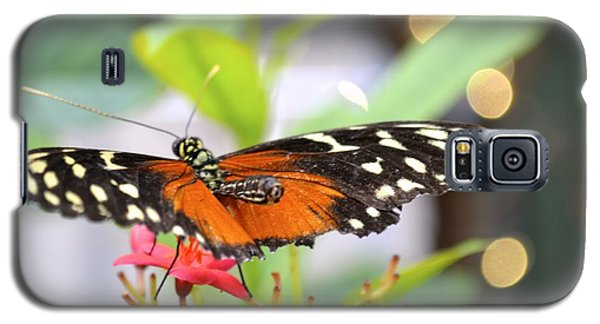 Galaxy S5 Case featuring the photograph Butterfly Beauty by Carla Carson