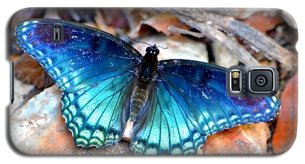 Galaxy S5 Case featuring the photograph Butterfly Blue  by Deena Stoddard