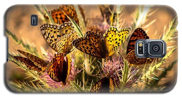Butterfly Bouquet Galaxy S5 Case