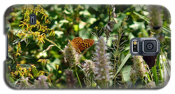 Butterfly Buffet Galaxy S5 Case