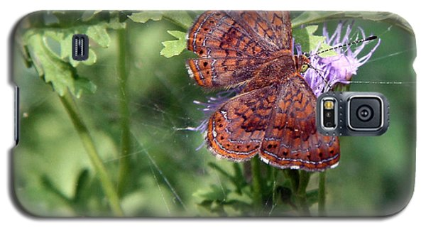 Galaxy S5 Case featuring the photograph Butterfly by Elaine Malott