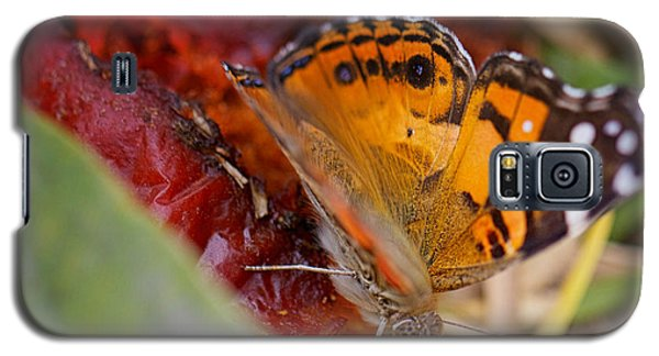 Galaxy S5 Case featuring the photograph Butterfly by Erika Weber