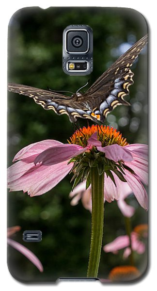 Galaxy S5 Case featuring the photograph Butterfly Flies Away by Glenn DiPaola