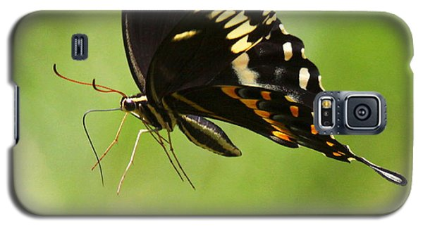 Galaxy S5 Case featuring the photograph Butterfly Flight by Myrna Bradshaw