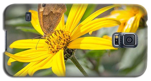Butterfly. Galaxy S5 Case