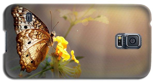 Butterfly Glow Galaxy S5 Case