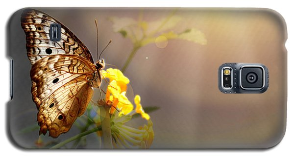 Butterfly Glow Galaxy S5 Case by Judy Vincent