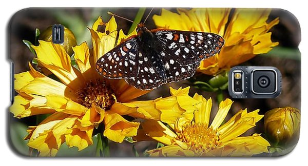 Galaxy S5 Case featuring the photograph Butterfly Heaven by Julia Hassett