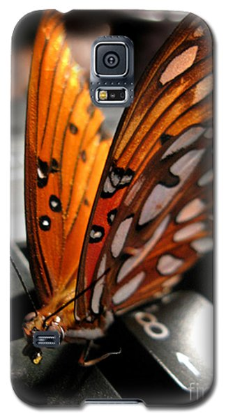 Galaxy S5 Case featuring the photograph Butterfly Home At 7 by Jennie Breeze