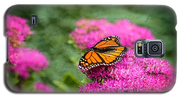 Galaxy S5 Case featuring the photograph Butterfly In Bloom by Mary Timman