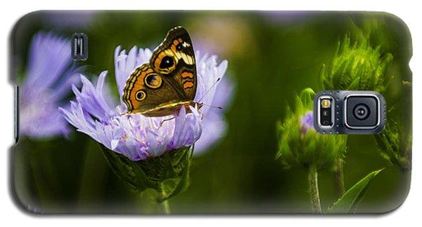Butterfly In Field Galaxy S5 Case