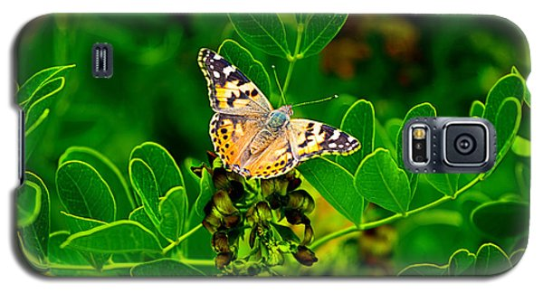Butterfly In Paradise Galaxy S5 Case