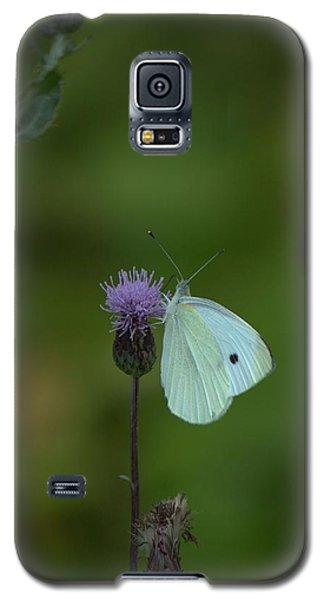 Butterfly In White 2 Galaxy S5 Case