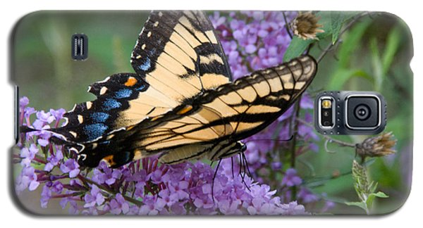 Galaxy S5 Case featuring the photograph Butterfly Landing by Greg Graham