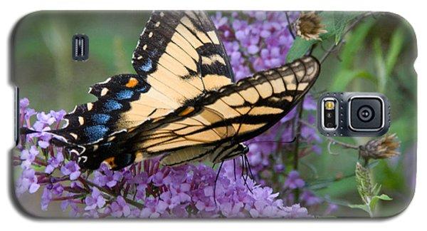 Butterfly Landing Galaxy S5 Case