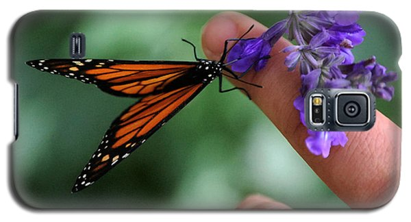 Galaxy S5 Case featuring the photograph Butterfly by Leticia Latocki