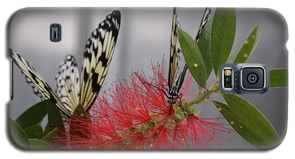 Galaxy S5 Case featuring the photograph Butterfly Love by Carla Carson