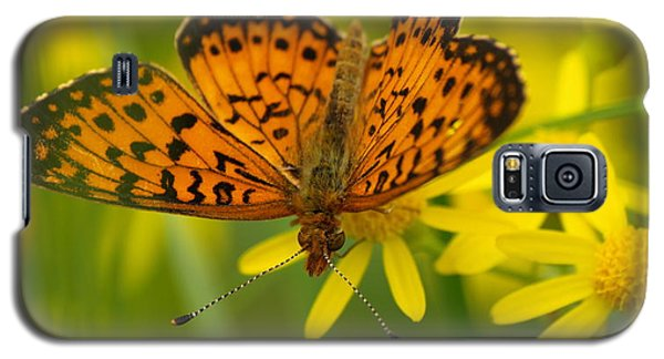 Galaxy S5 Case featuring the photograph Butterfly by James Peterson