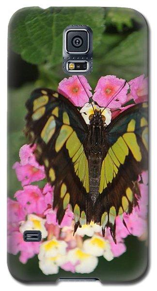 Butterfly Of Love Galaxy S5 Case by Bill Woodstock