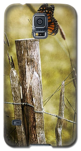Galaxy S5 Case featuring the photograph Butterfly On A Fence by Ethiriel  Photography
