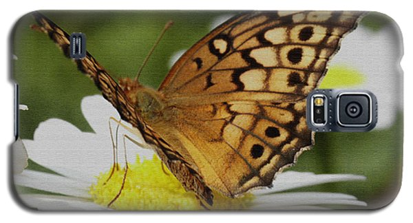 Galaxy S5 Case featuring the photograph Butterfly On Daisy by James C Thomas