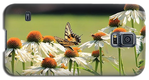 Butterfly On Echinacea Galaxy S5 Case