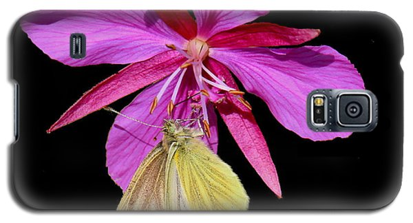 Galaxy S5 Case featuring the photograph Butterfly On Fireweed by Myrna Bradshaw
