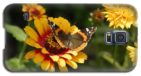 Butterfly On Flower Galaxy S5 Case by Charles Beeler