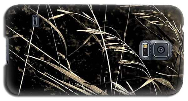 Butterfly On Grasses Galaxy S5 Case