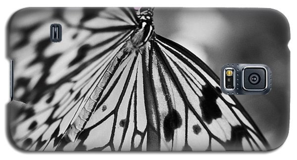Butterfly On Pink Flowers Galaxy S5 Case